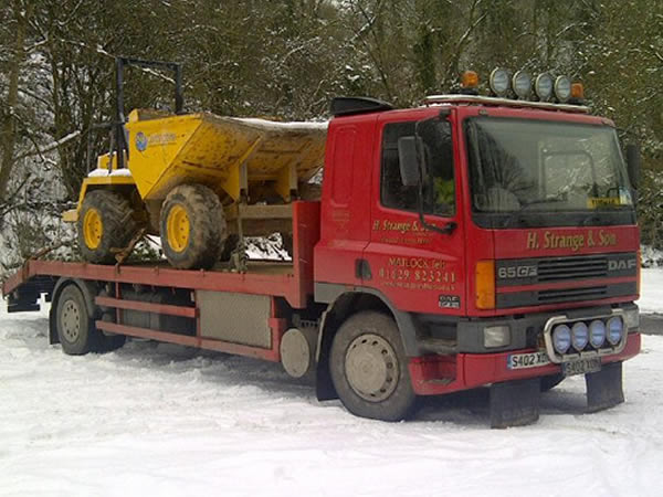 plant lorry with dumper